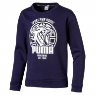 SUDADERA PUMA ALPHA GRAPHIC JUNIOR 580234-06